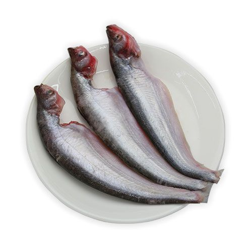 Pabda ( Butter fish ) Whole - Cleaned ( Without Cut )