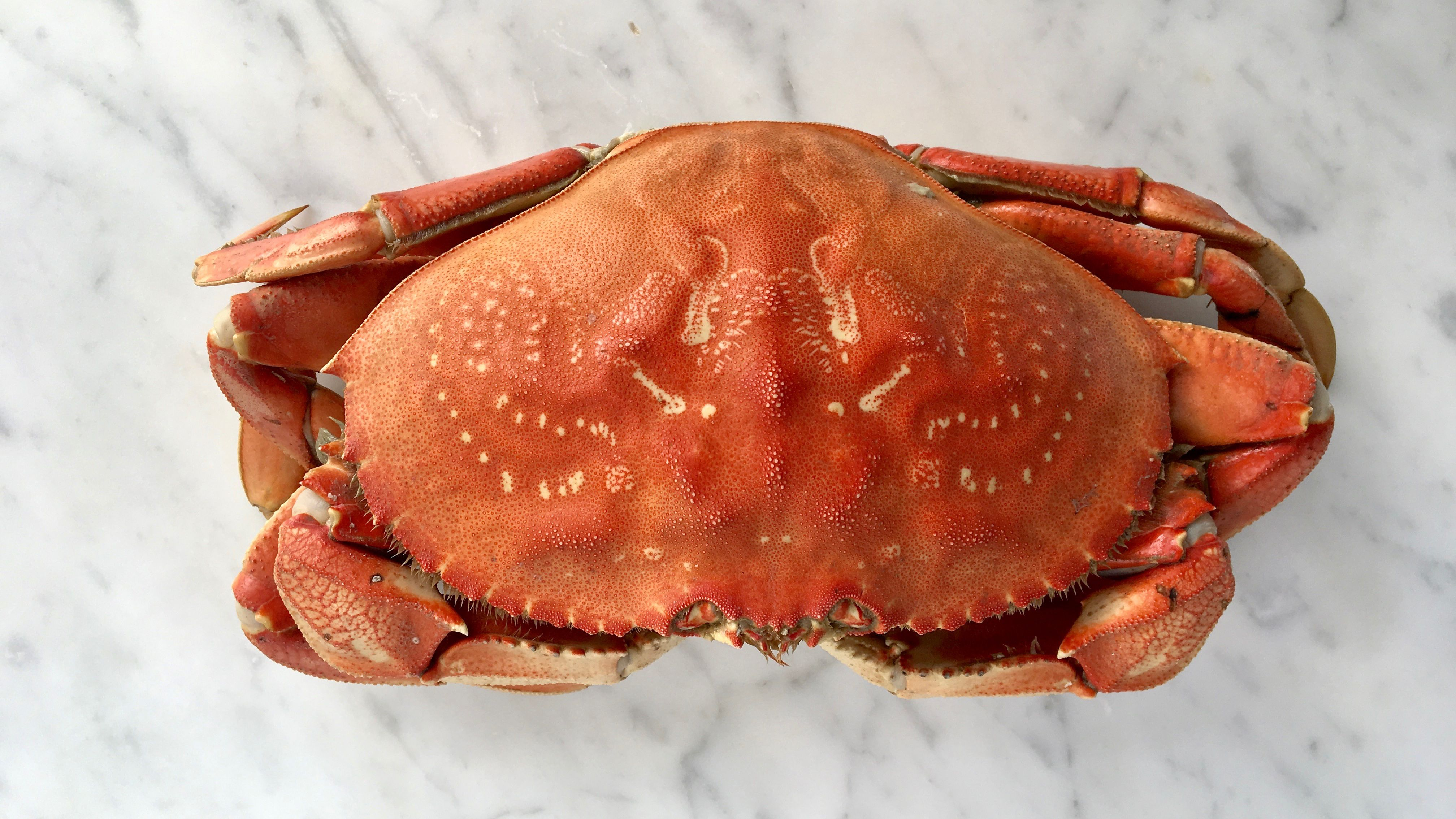 Red Crab Whole - Cleaned